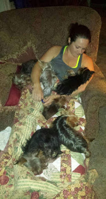 Wendy Vanderberg with a lapful of yorkie puppies