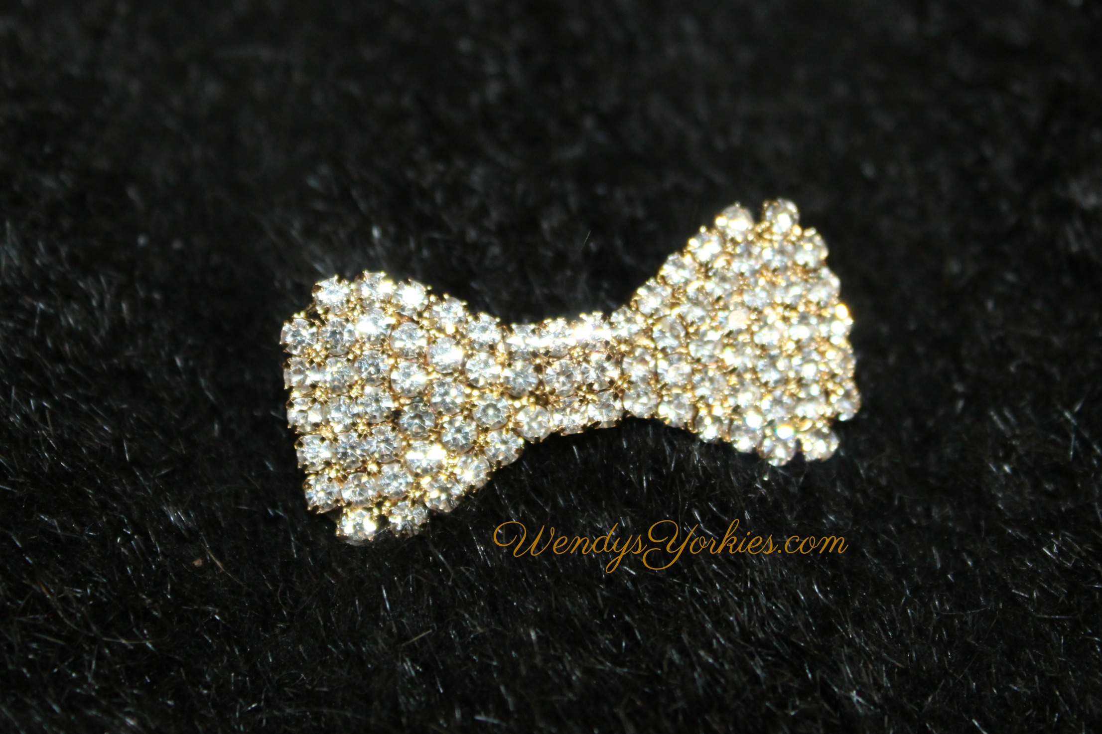Gold Bling bow, WendysYorkies.com