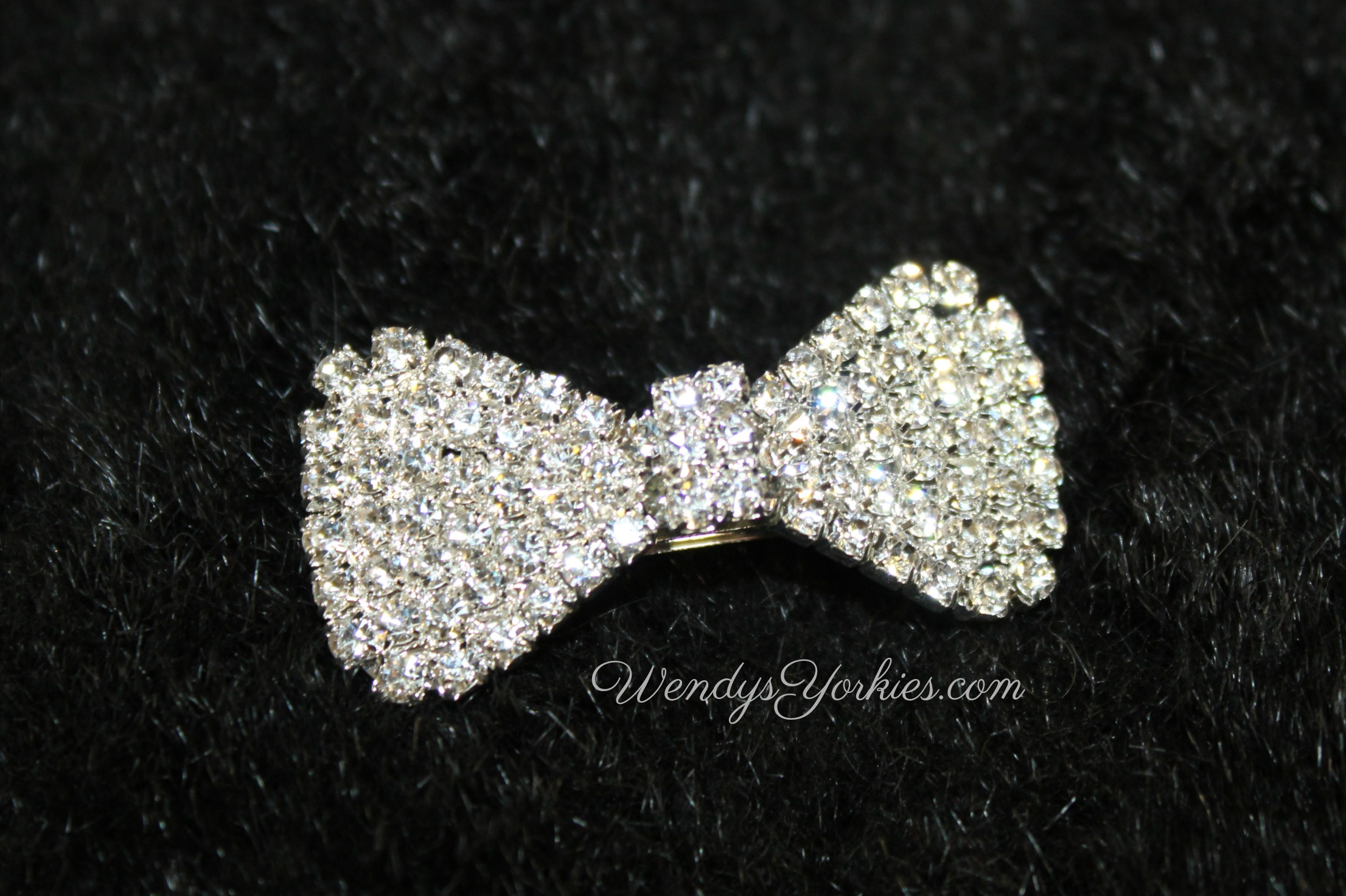 Silver Bling Bow, WendysYorkies.com