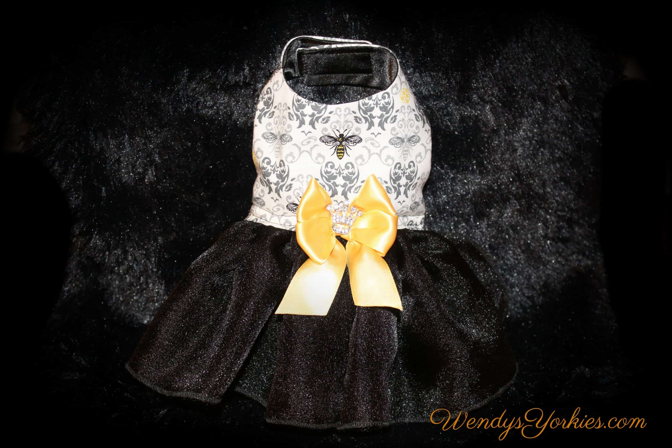 Custom dog dresses, Napoleon Bee Dog dress, Yorkie dresses, WendysYorkies.com,